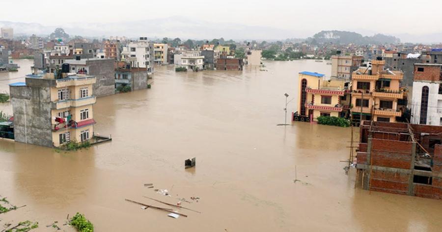 औद्योगिक क्षेत्रमा पानी पस्यो, दुई सय बिघा धान खेत डुबानमा
