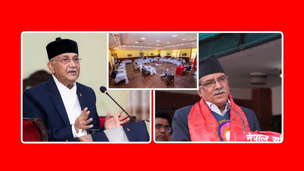 प्रधानमन्त्री, संसदीय प्रजातान्त्रिक प्रणाली र पार्टीभित्रका प्रतिपक्षी