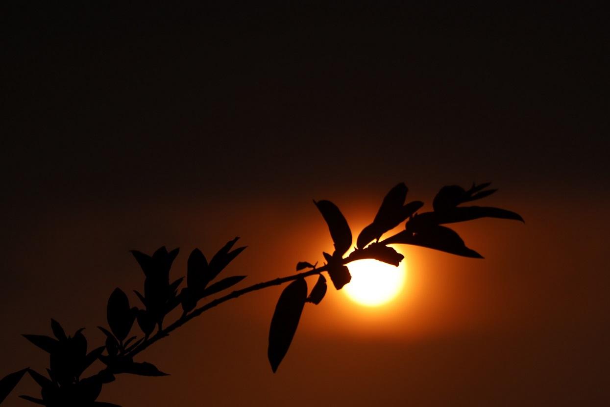 सूर्यास्त (तस्बिरहरू)