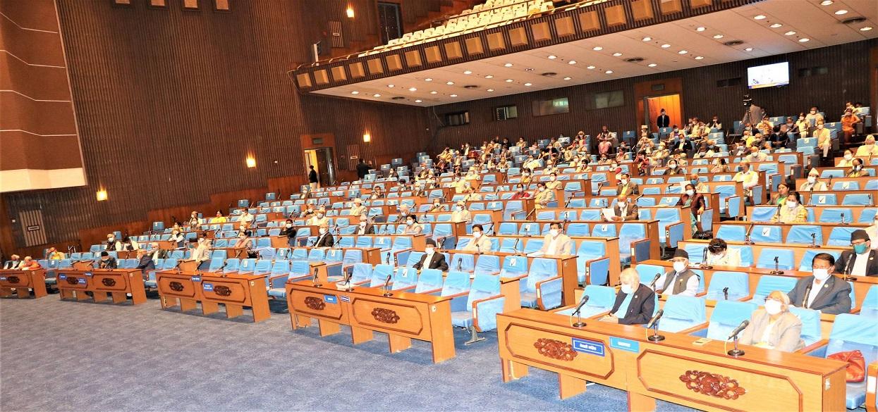 प्रतिनिधि सभाबाट आर्थिक विधेयक पारित
