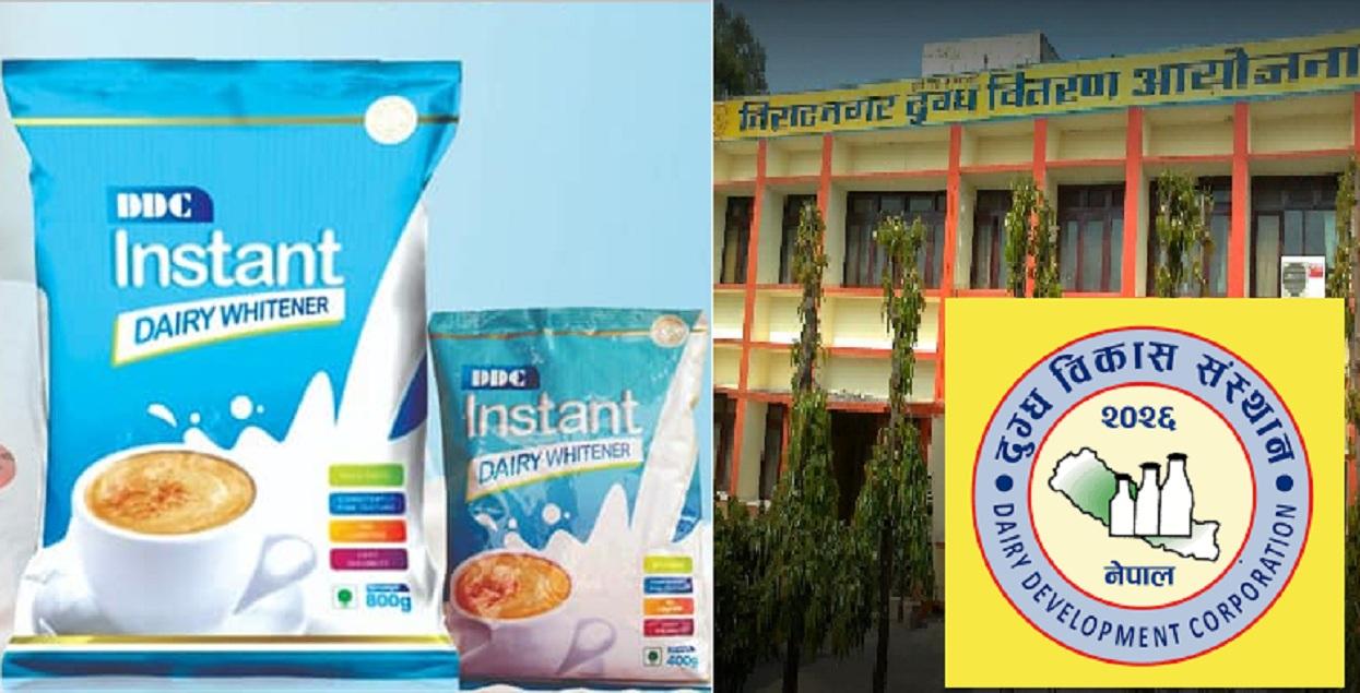 डीडीसीको धुलाे दूध 'इन्स्ट्यान्ट डेरी ह्वाइटनर'को व्यवसायिक उत्पादन सुरु
